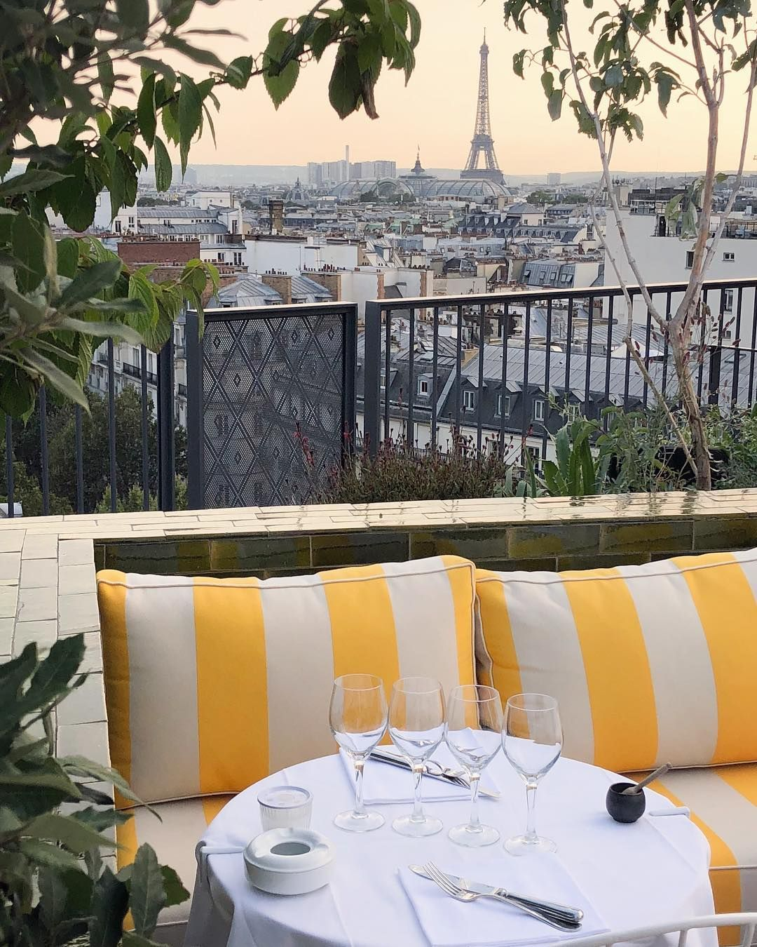 Rooftop - Perruche - Paris - Toi Toi Mon Toit
